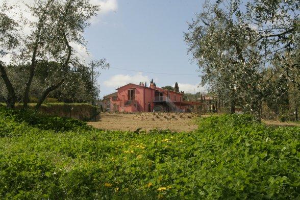 Farmhouse Terricciola